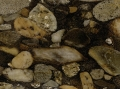 black-mosaic-gold