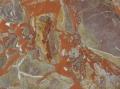 macchia-vecchia-rossa