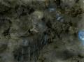 labradorite-verde